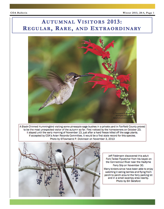 COA Bulletin No. 4, Winter 2013