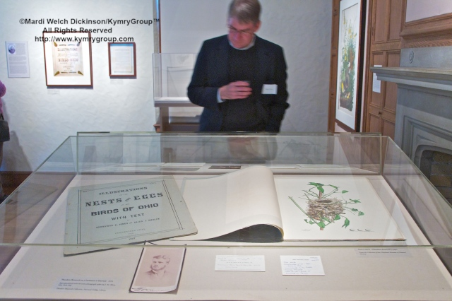 Visitor with Theodore Roosevelt's subscription parts to Illustrations of the Nests and Eggs of Birds of Ohio, Cleveland Museum of Natural History Collection. Nests, Eggs, Heartbreak & Beauty exhibition, opening reception and book signing, Museum of American Bird Art at Mass Audubon. ©Mardi Welch Dickinson/Kymry GroupAll Rights Reserved.