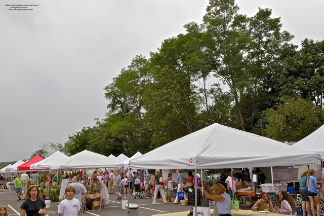 Westport Farmers Market, ©Mardi Welch Dickinson/Kymry Group™ All Rights Reserved.