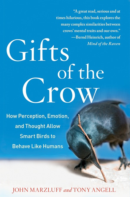 Gifts of the Crow book cover.