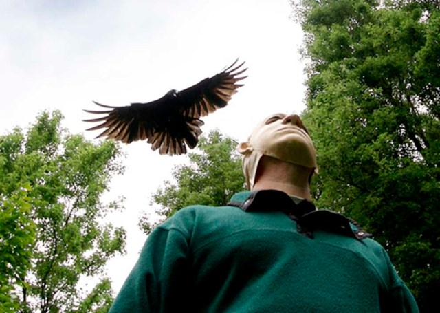 John Marzluff with mask on and crow flying above. All Rights Reserved. Photo used with permission by author.