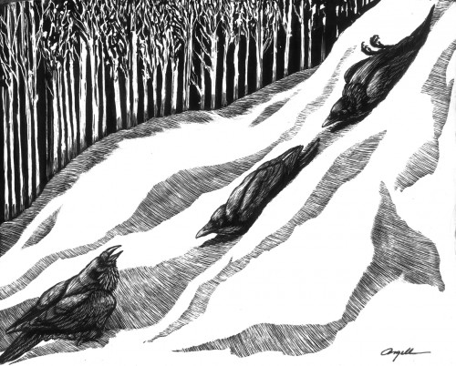 Tony-Angell's Illustration of Crows having fun. ©Tony-Angell. All Rights Reserved.