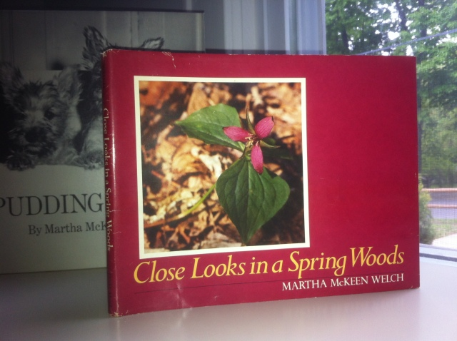 Close Looks in a Spring Woods, by Author & Photgrapher Martha McKeen Welch. ©Mardi Welch Dickinson/ KymryGroup™ All Rights Reserved.