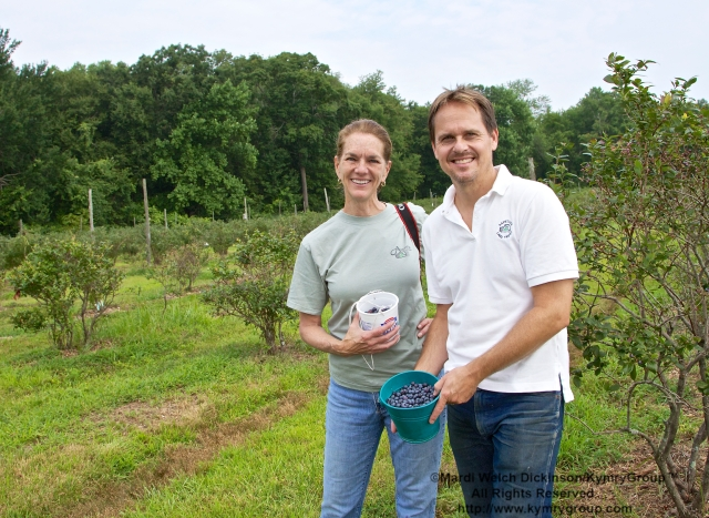 l. to r. Nancy Moon, VP Marketing & Communication & Board Member, Aspetuck Land Trust. David Brant, Executive Director, Aspetuck Land Trust. Picking blueberries in the orchards at Aspetuck Land Trust property of Trout Brook Valley Preserve on August 1, 2013. i©Mardi Welch Dickinson/KymryGroup.