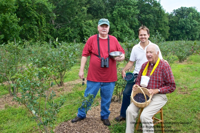l. to r. Townsend P. Dickinson, Norwalk CT; David Brant, Executive Director, Aspetuck Land Trust; Bud Martin, Weston CT, Board Member & Event Organizer, Aspetuck Land Trust. Picking blueberries in the orchards at Aspetuck Land Trust property of Trout Brook Valley Preserve on August 1, 2013. ©Mardi Welch Dickinson/KymryGroup. All Rights Reserved.