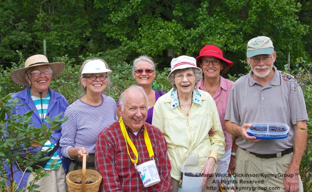l. to r. Vidal Clay, Westport CT; Brenda Ungerland, Southport CT; Bud Martin, Weston CT, Board Member & Event Organizer, Aspetuck Land Trust; Relly Coleman, Westport, CT; Joe Kusnierczak, Easton CT Native and her Niece Mary Randolph; Tom Johnson, Board Member, Aspetuck Land Trust. Seniors picking blueberries in the orchards at Aspetuck Land Trust property of Trout Brook Valley Preserve on August 1, 2013. ©Mardi Welch Dickinson/KymryGroupAll Rights Reserved.
