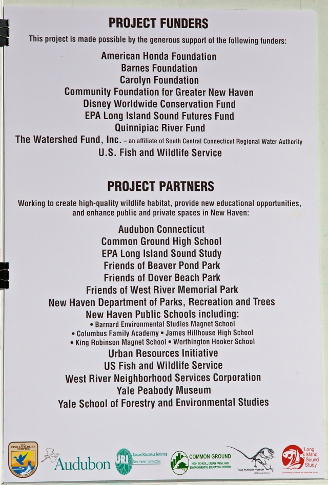 This project is made possible by the generous support of the following funders & Partners. Commissioner in your Corner, Celebrating New Haven Parks; Urban Oases for Birds and Wildlife. Barnard Nature Center, West River Memorial Park, New Haven, CT. ©Mardi Welch Dickinson/ KymryGroup™ All Rights