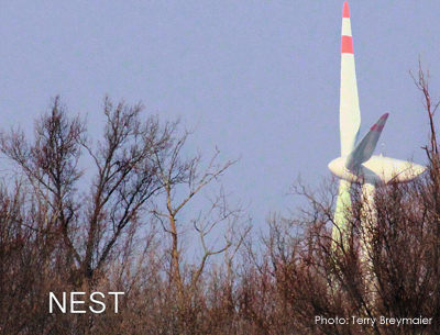 Image showing the proximity of wind turbine to Bald Eagle nest,  Port Clinton, Ohio. Photo   ©Terry Breymaiser (contributed)