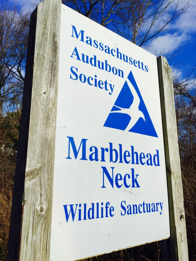 Massachusetts Audubon Society, Marblehead Neck Wildlife Sanctuary sign. December 26,2014. ©Mardi Welch Dickinson All Rights Reserved.