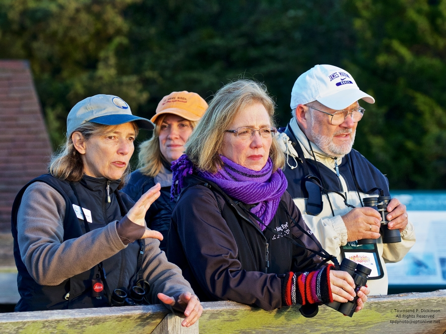 L. Dale Rosselet, Vice President of Education, NJ Audubon; talking hawks with Cape May Fall Festival participants at the Cape May Hawk Platform, Cape May Point State Park, NJ. ©Townsend P. Dickinson.