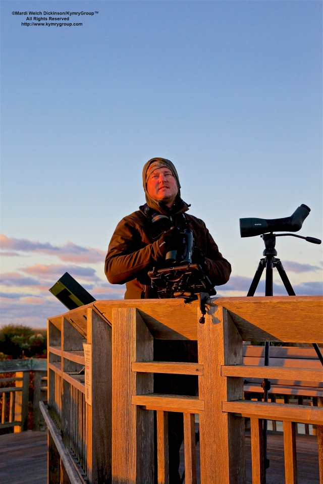 Cape May Fall Birding Festival Cameron Cox, Official Hawk Counter at Cape May Point Hawkwatch platform, Cape May Point State Park, Cape May NJ. ©Mardi Welch Dickinson.